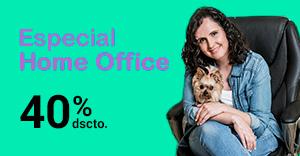 Sillas especiales home office